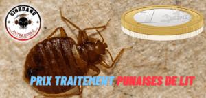 Prix désinfection punaises de lit Essonne
